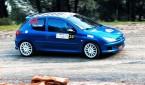 kat_3_tansel_karasu_2013_otomobiltutkunu_Peugeot 206 Rally Car_Peugeot 206 Rally