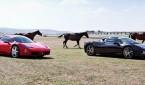 Ferrari Club Turkey_Fer Mas_Ferrari_Maserati_otomobiltutkunu_Tofaş_Alaçatı Port_İstanbul_Çeşme_Alaçatı_Urla_Quasar Istanbul