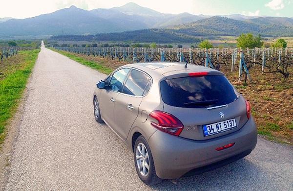 Peugeot 208 Test_Peugeot_Active